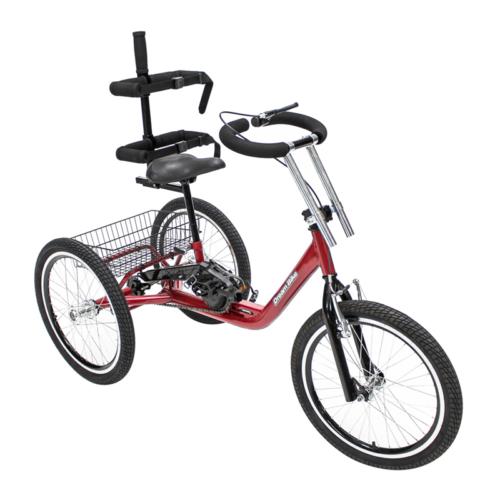 TricicloAdaptado1