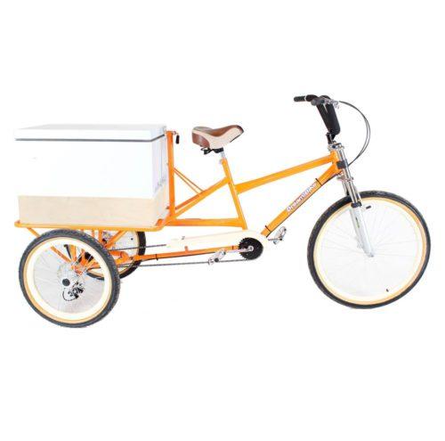 triciclo-carga-traseira-termica