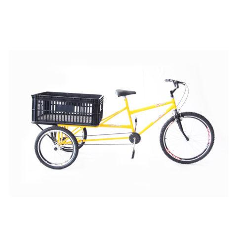triciclo-de-carga-traseira-60-kgs