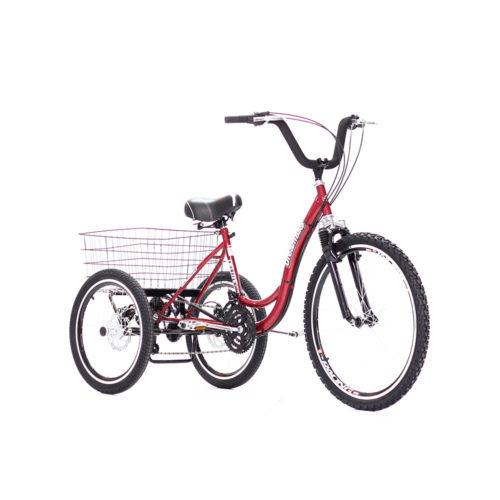 triciclo-rebaixado-com-marchas-freio-a-disco