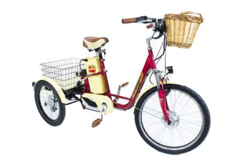 triciclo_eletrico_elektra (1)