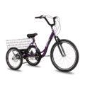 triciclo-rebaixado-marchas-roxo