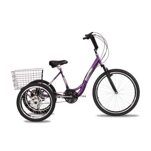 triciclo-rebaixado-marchas-roxo-lateral