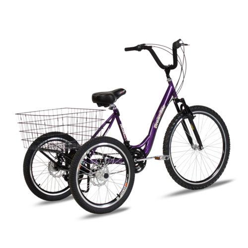triciclo-rebaixado-marchas-roxo-traseira