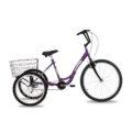 triciclo-rebaixado-roxo-principal
