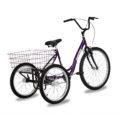 triciclo-rebaixado-roxo-traseira